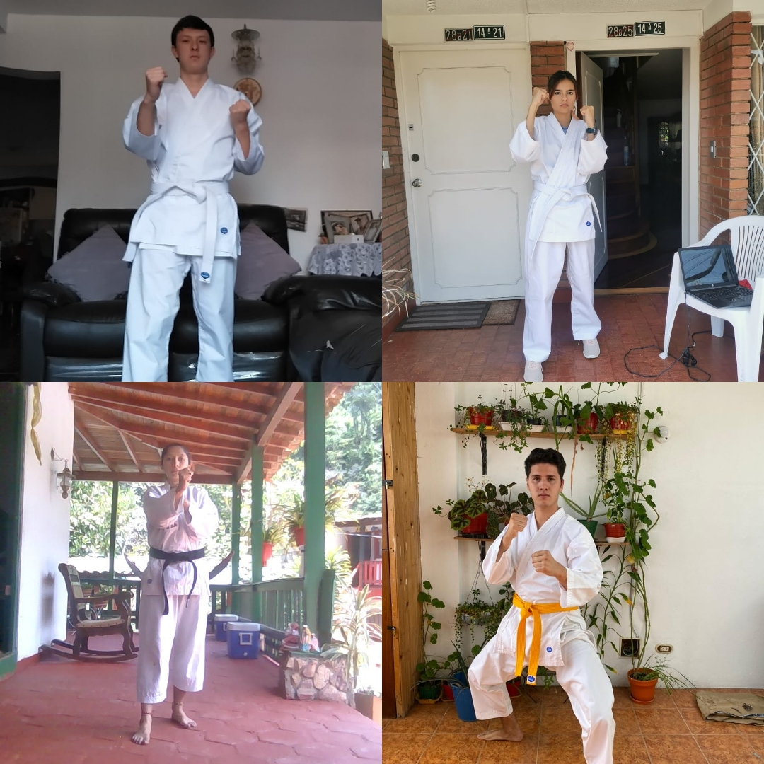 Torneo Virtual Karate Do Abril 2020